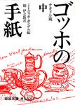 ゴッホの手紙岩波.jpg